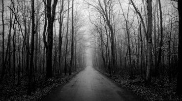 Image of Spookiest Roads Around The World